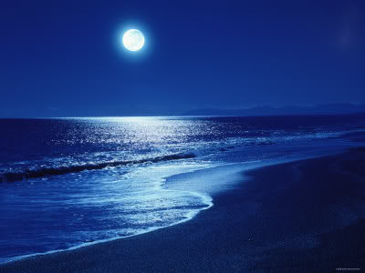 Moonlit Walk on a Beach